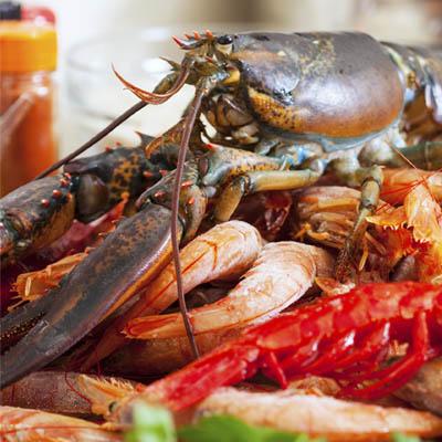 mariage-brest-fruits-de-mer-buffet-poissonnerie-coutant-guilers-2